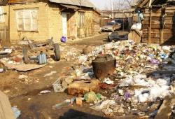 Bakterie i wirusy w taborach romskcih